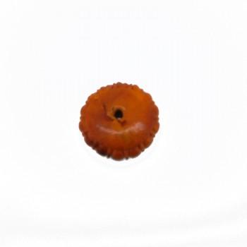 Particolare da mm.30 in resina c/foro