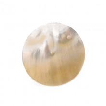 Tondo da mm 25 in conchiglia (mop)