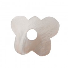 Farfalla con foro in conchiglia cm 2.5 circa (hammer shell)