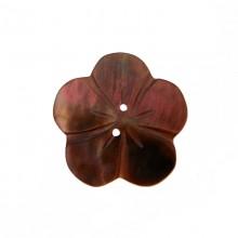 Fiore in conchiglia grande (black lip) con fori cm 2.5 circa