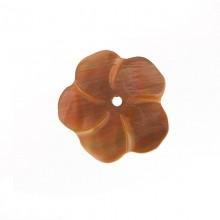 Fiore in conchiglia grande (brown lip) con foro cm 2.5 circa