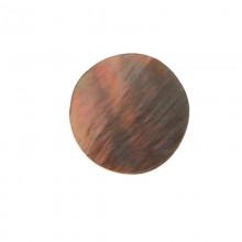Conchiglia naturale mm 15 con base in resina (brown lip)