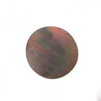 Conchiglia naturale mm 24 con base  in resina (brown lip)