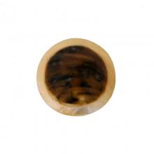 Tondo in conchiglia black lip naturale/grezza da cm 3