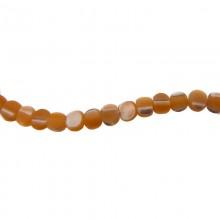 Filo conchiglia (flat round brown troca) da cm 40