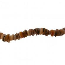 Filo conchiglia (gold lip nuggets) da cm.40