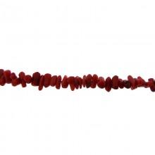 Filo cips di spugna corallo rosso da cm.40